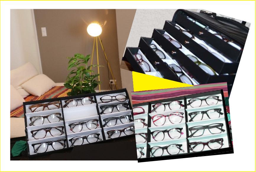 marmotte de collection de lunettes